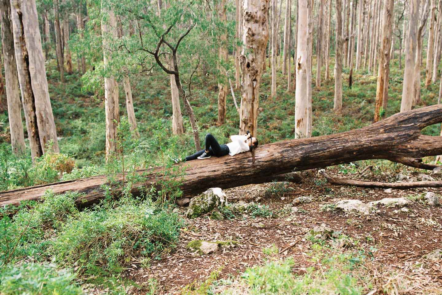 Girl laying on large tree
